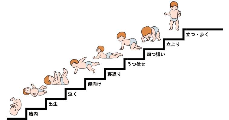 子供の発育過程